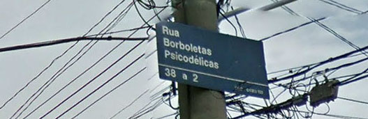 rua_borboletas_psicodelicas