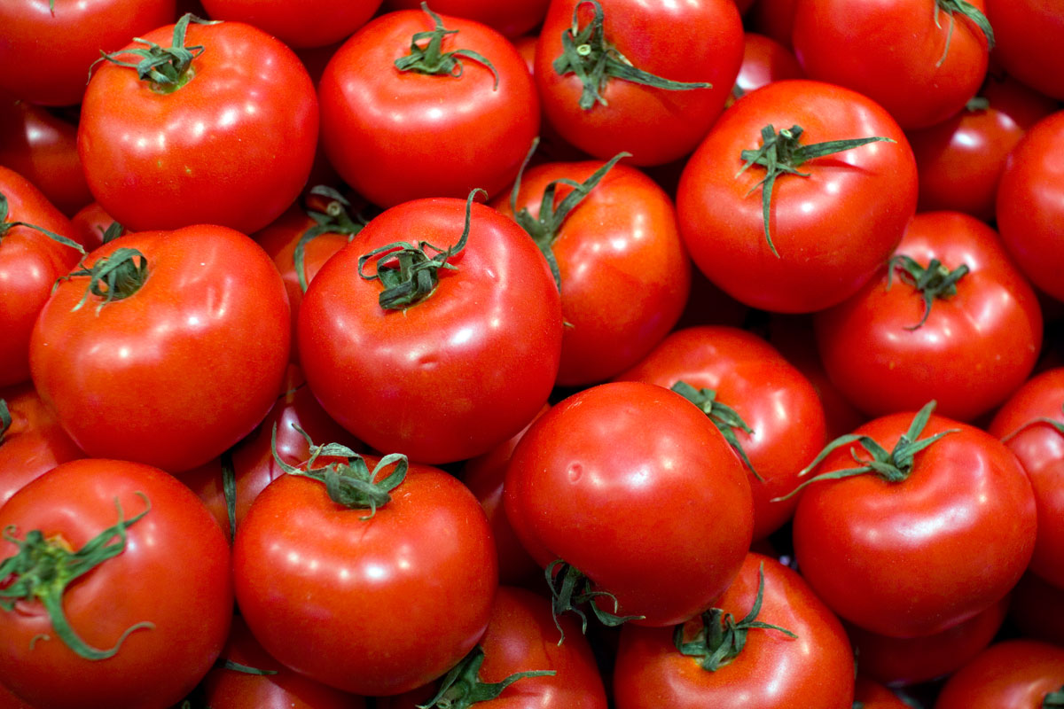 tomates-vermelhos